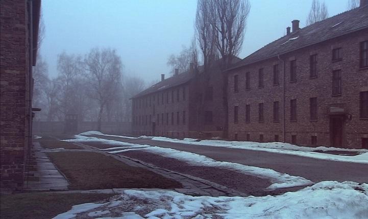 Auschwitz - The Destruction Trilogy