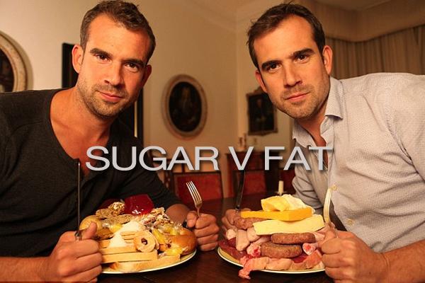 Sugar V Fat